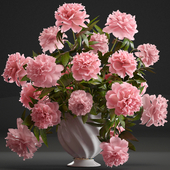 Collection of flowers 40. Bouquet of Peonies