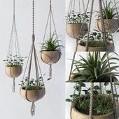 Decorative set of flower pots