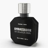 ambassador black sea