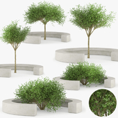COMB BY VORA ARQUITECTURA Tree Bench