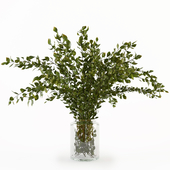 Branches in the vase 005