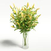Lilybud flower