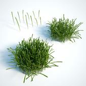 Трава для экстерьера