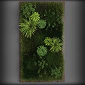 Vertical gardening 02