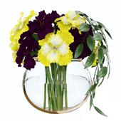 Violet and yellow irises