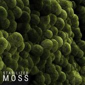 Stabilized Moss 3