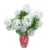 Vase Hydrangea