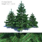 Spruce set 01