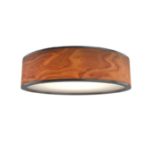 Chandelier Jupiter