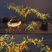 Sea buckthorn and kettle