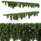 Hanging Plant - 14 Modular Pieces