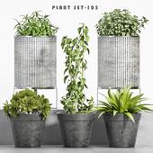 plant set-105
