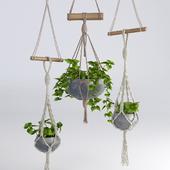 Hanging flowerpots # 4