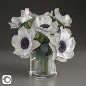 Bouquet of anemone