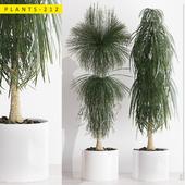 PLANTS 212