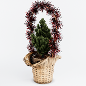 Wicker basket with spruce