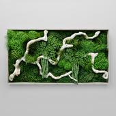 Moss, fern and snag fytowall