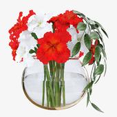 Red and white irises