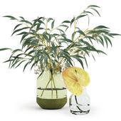 Eucalyptus&Anthurium in Muuto's vases
