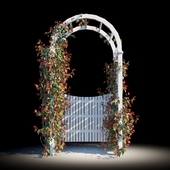 Garden arch with gate and ivy