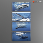 Set of posters on the marine theme / Posters_SET_Cetacean