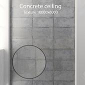 Concrete ceiling 32
