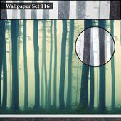 Wallpaper 116