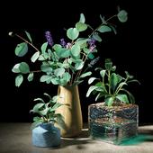 Plant set 05