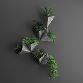 Wall plant 1