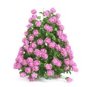 Plants Hydrangea set 09
