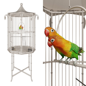 Cage with lovebirds