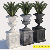 plants 223