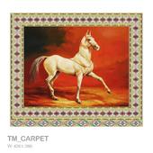 TM_CARPET 420x360