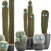 Plant collection 301. Cactus set.