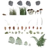 Forest ground set