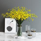 Decorative set_Oncidium hybridum
