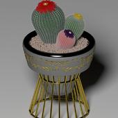 Cactus Sliver Gold
