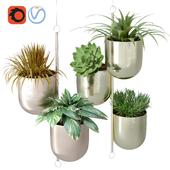 Metal Hanging Indoor Plant Pots