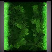 JC Green Moss Fitowall 2