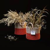 Field plants set