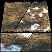 Dry grass | Thaw pollen
