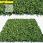 Grass 3