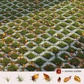 Grass in the square brick