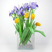Ирисы и тюльпаны.