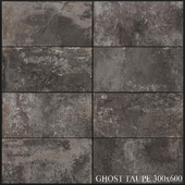 ABK Ghost Taupe 300x600