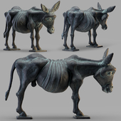 Pavel Quoytcheff Donkey 2006