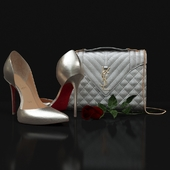 Designer Shoes And Bag