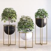 Eden cross base standing planters set