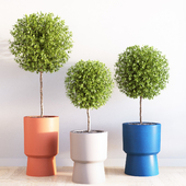 Bishop pedestal planters