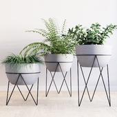 Iris planter with chevron stand